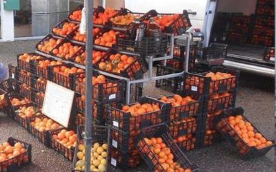 Ventes sauvages de fruits et légumes : vers un meilleur contrôle